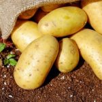 Potatoes are healthy!